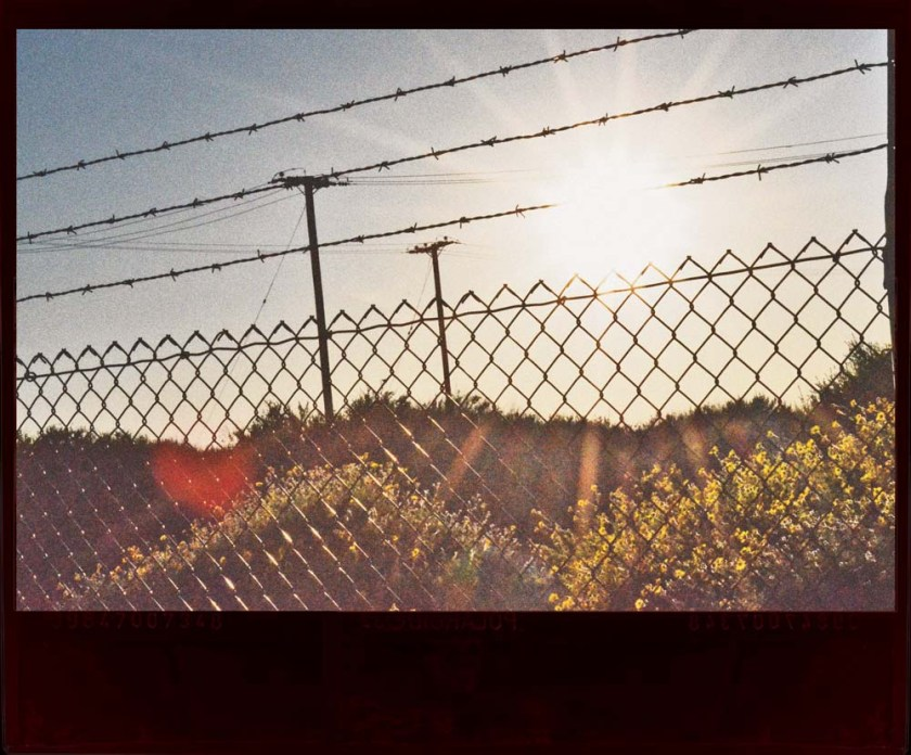 looking through barbwire