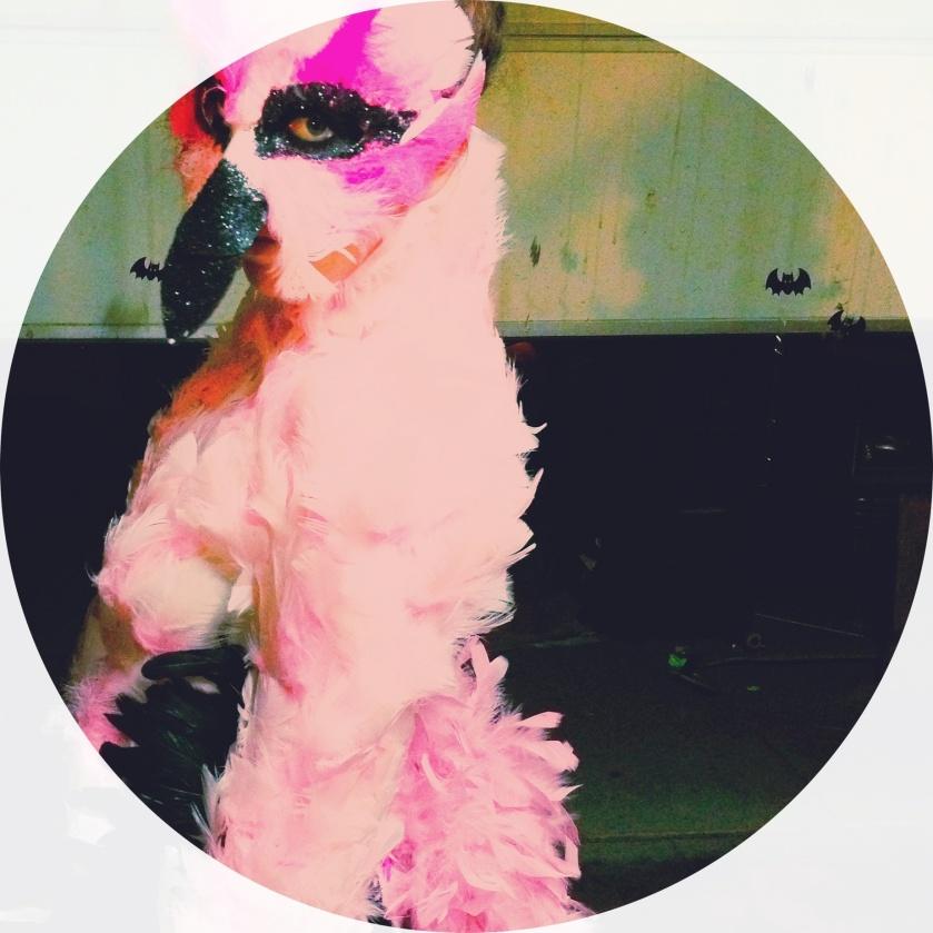 handmade flamingo costume